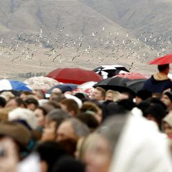 A flock of Seagulls flies near the crowd as thousands turn out in the rain Saturday, Oct. 8, 2011 for the ground breaking for the Payson Temple.