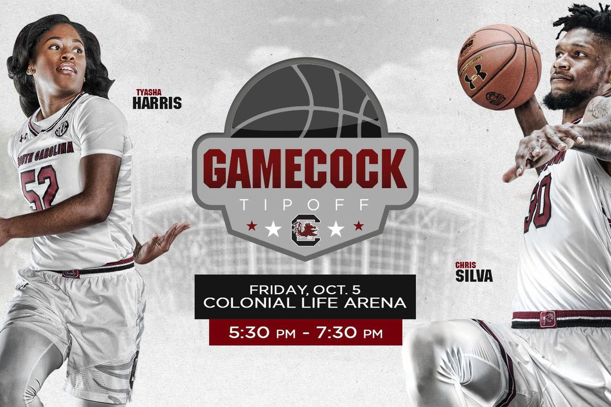 gamecocks begin preseason basketball with scrimmage - garnet and