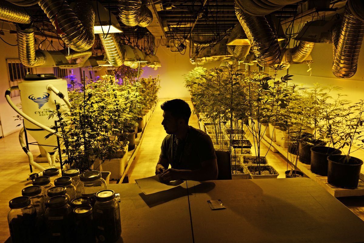 A marijuana business manager prepares for the first day of recreational sales.