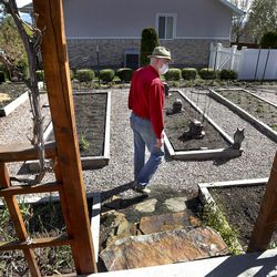 Dr. Dan Thomas, an anesthesiologist who is currently out of work because elective medical procedures have been canceled due to the coronavirus outbreak, works in the garden at his home in Provo on Monday, April 20, 2020.