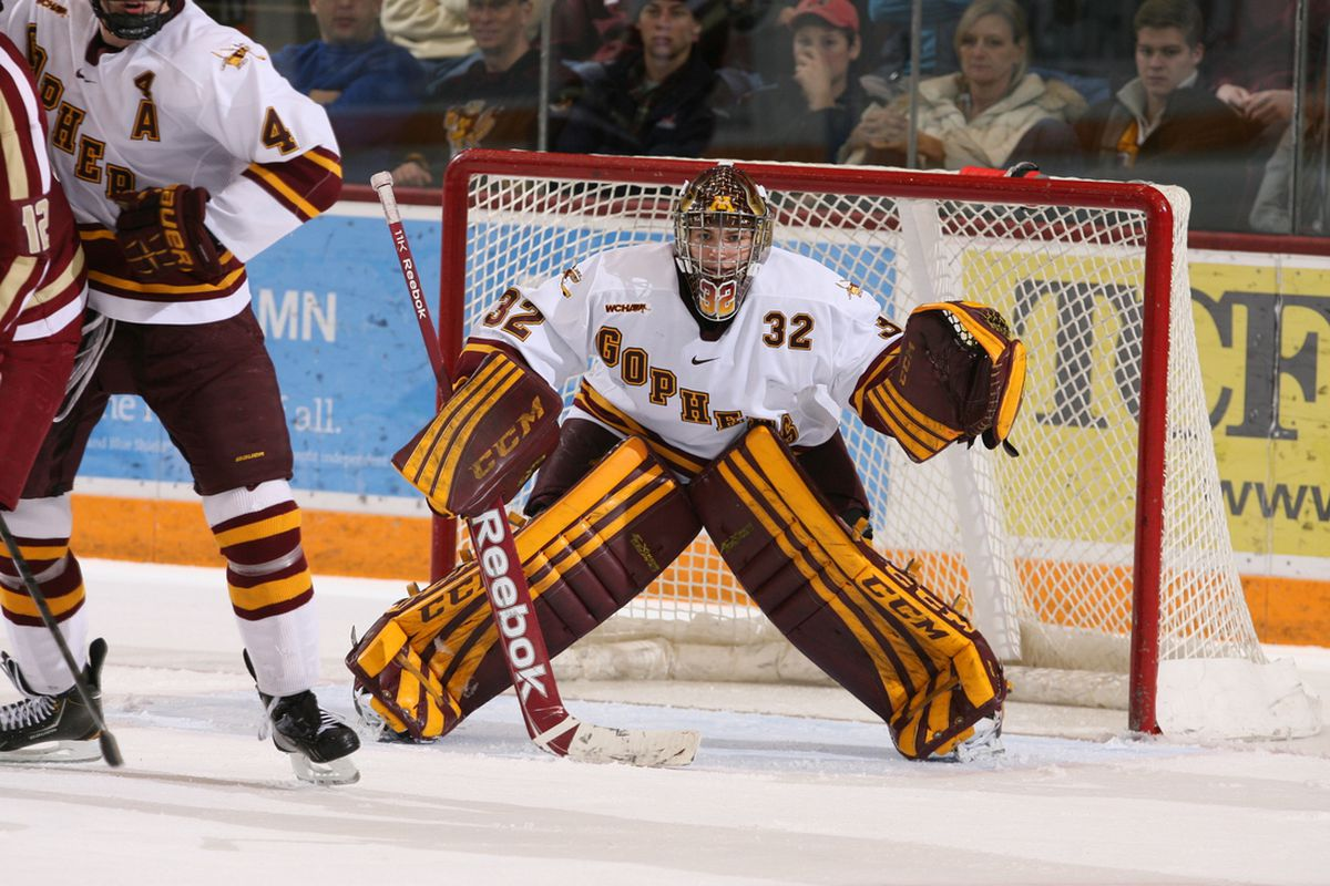 Adam Wilcox made 34 saves for Minnesota in a 4-1 win Friday night