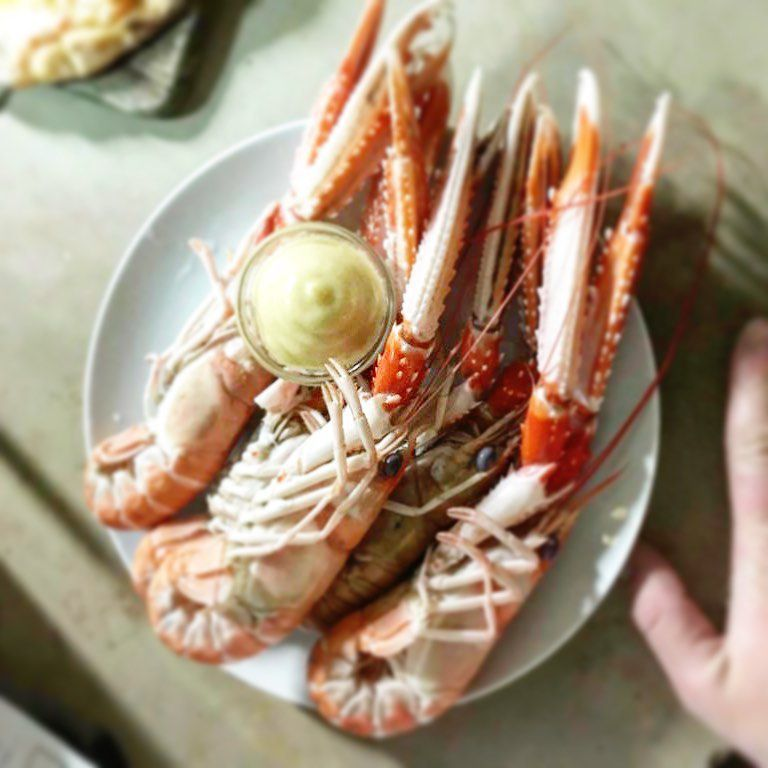 A close-up shot of several large cooked langoustines on a plate with a small crock of butter, resting on a counter beside the photographer's hand