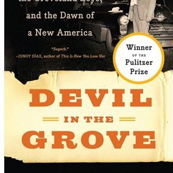 """<strong><em><a href=""""http://www.booksandbooks.com/book/9780061792267"""">The Devil in the Grove</a></em> by Gilbert King:</strong> This won King the Pulitzer Prize in 2013. It is the horrific account of four young black men (referred to as """"The Groveland Boy"""