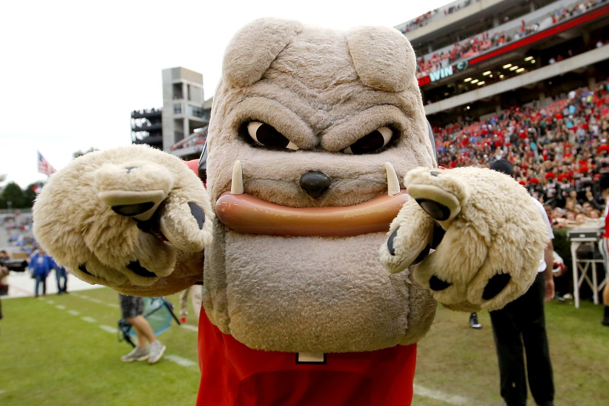 ATHENS, GA - NOVEMBER 7: Georgia Bulldogs mascot Hairy Dawg at the conclusion of the game against the Kentucky Wildcats on November 7, 2015 at Sanford Stadium in Athens, Georgia. Georgia won the game 27-3. (Photo by Todd Kirkland/Getty Images)