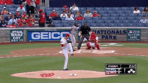fister 2015 max knee