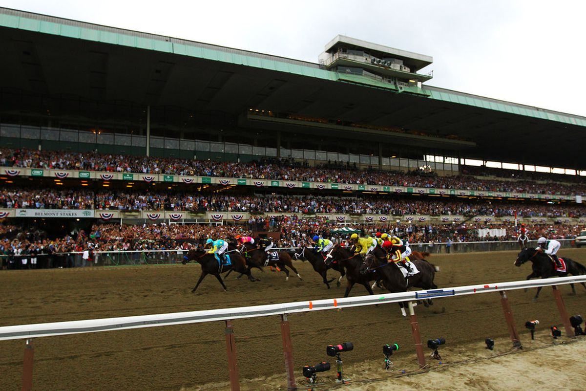 2013 Belmont Stakes picks and predictions: Orb seen as heavy