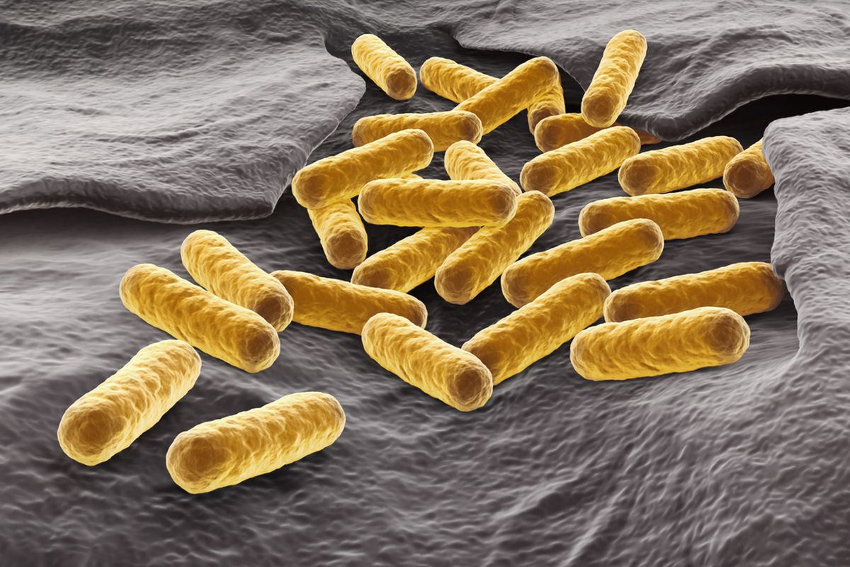 Scientists just discovered a drug-resistant stain of E. coli in a US patient.
