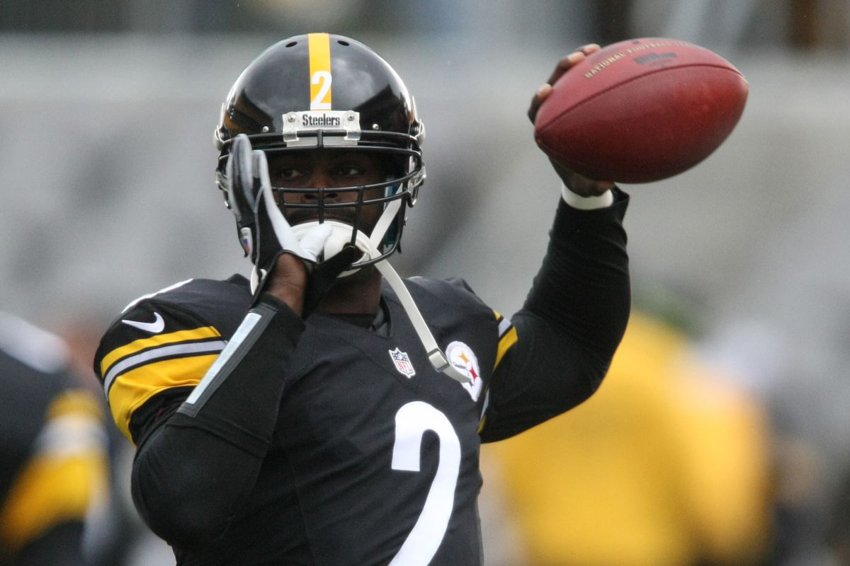 half off 4a330 e1a10 Mike Vick likely out another week after leaving Cardinals ...