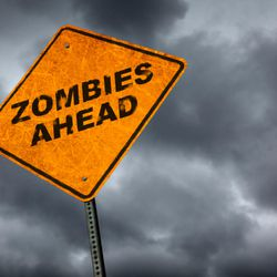 I thought a zombie was just a character in movies and games, just for entertainment. I was surprised to learn that zombies are a reflection of our culture.