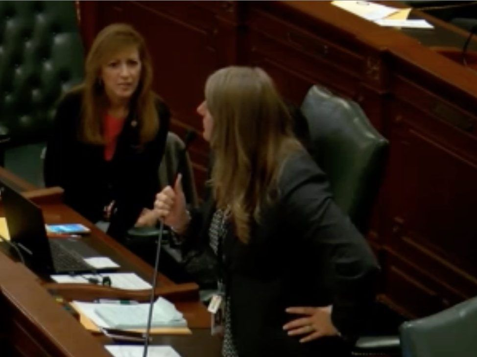 """State Rep. Stephanie A. Kifowit. D-Oswego, tells Rep. Peter Breen, R-Lombard, that she hopes a """"broth of legionella"""" bacteria infects his relatives' water system. Screen image."""