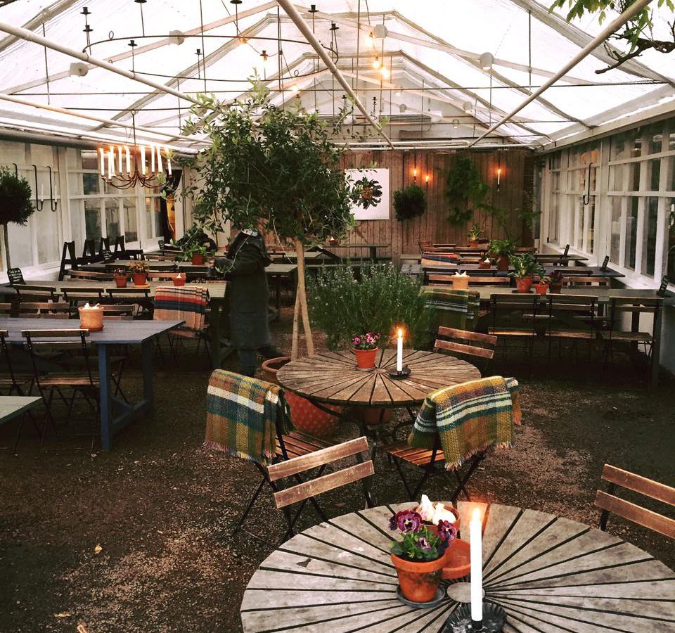A greenhouse-like restaurant interior with reclaimed wood tables, plants, and large skylights