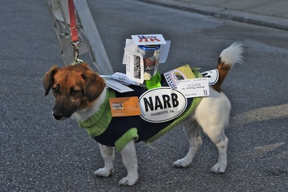 """Image credit: <a href=""""http://balacynwyd.patch.com/articles/viewfinder-scenes-from-fridays-narbark-dog-parade#photo-6401659"""">Richard Weisgrau for Patch</a>"""