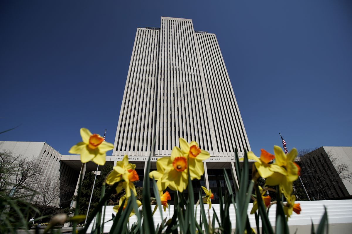 Yellow flowers bloom in the spring of 2020 outside the Church Office Building.