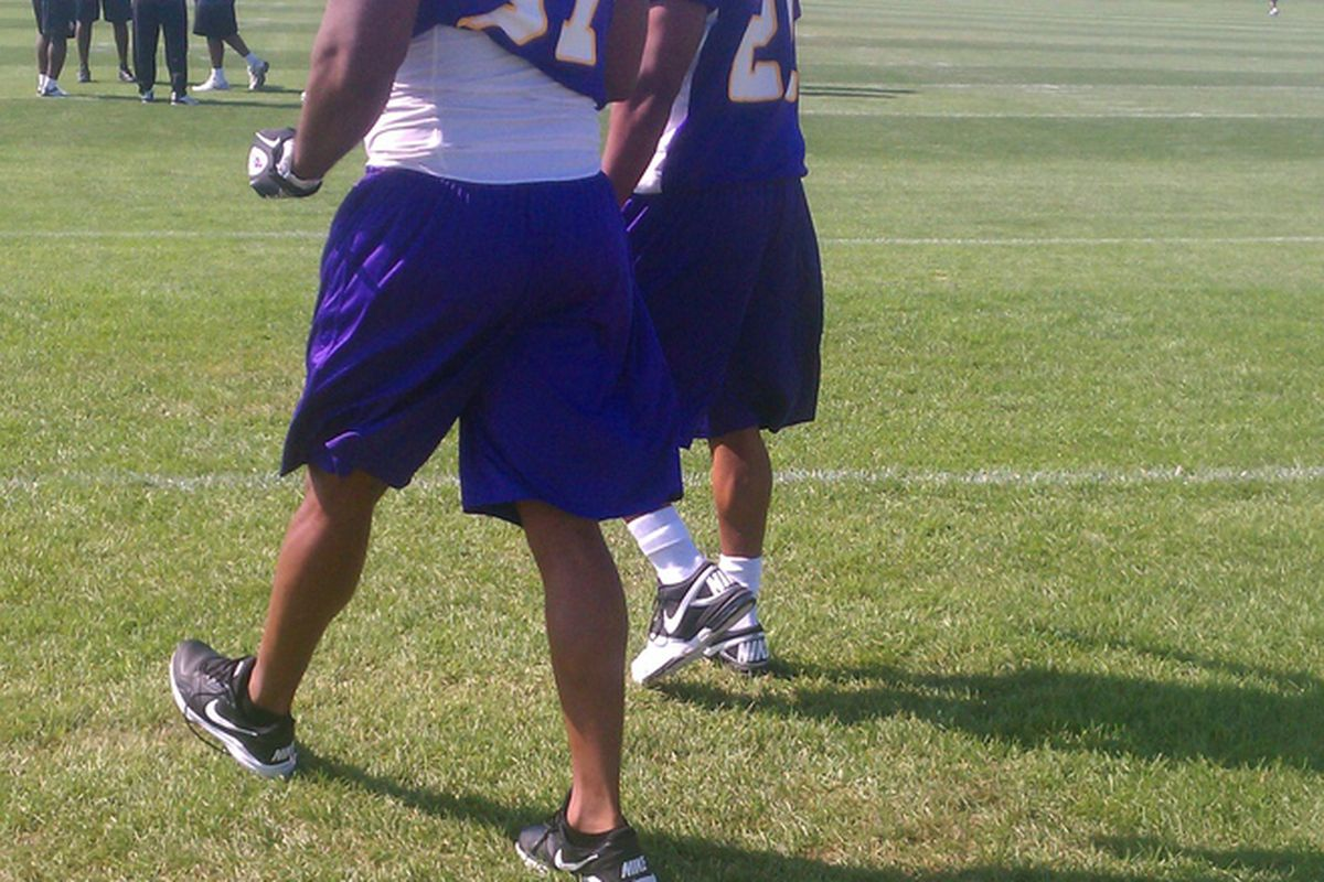Everson Griffen and Brandon Burton