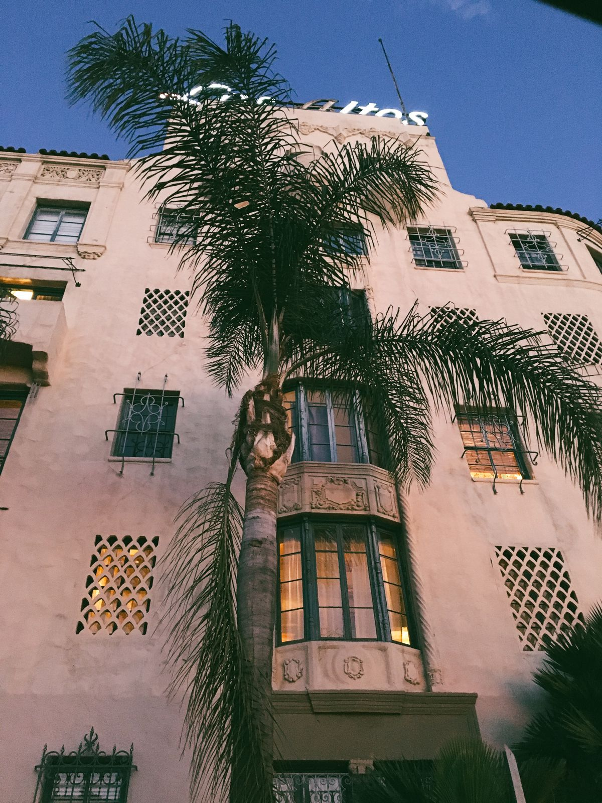 A tall palm tree is situated in front of a tall, light-pink building with many windows.