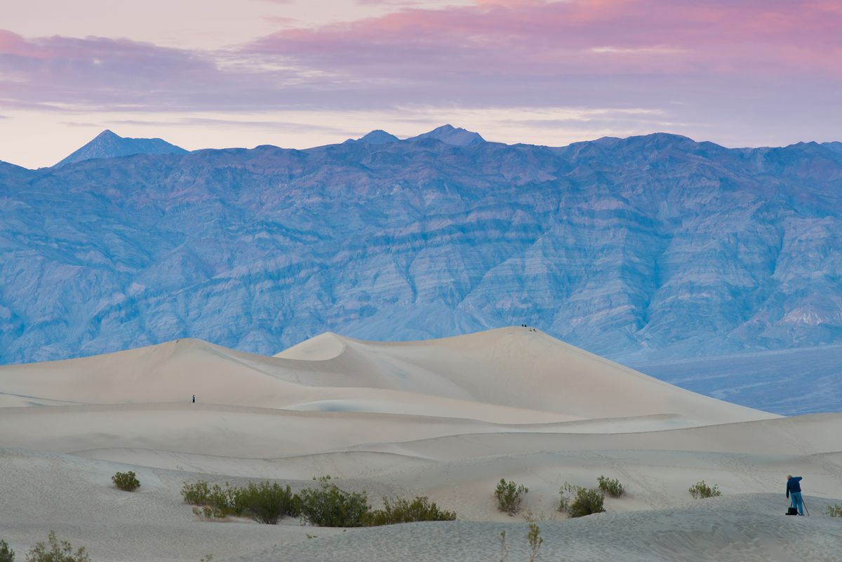 A pink sunset shows sand dunes in the middle of a desert.
