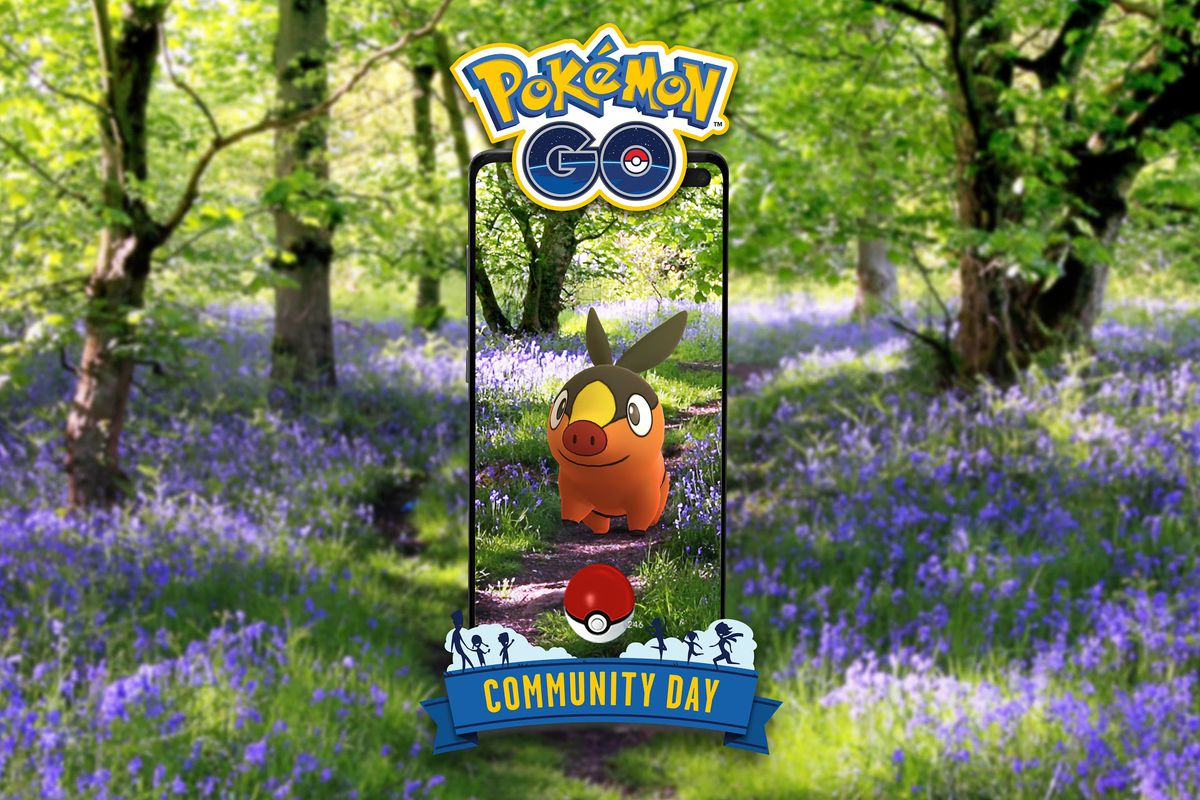 A Tepig stands in a forest of purple flowers in AR