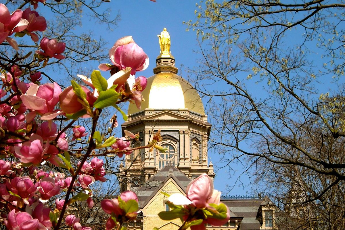 Notre Dame in the spring is a fine thing.