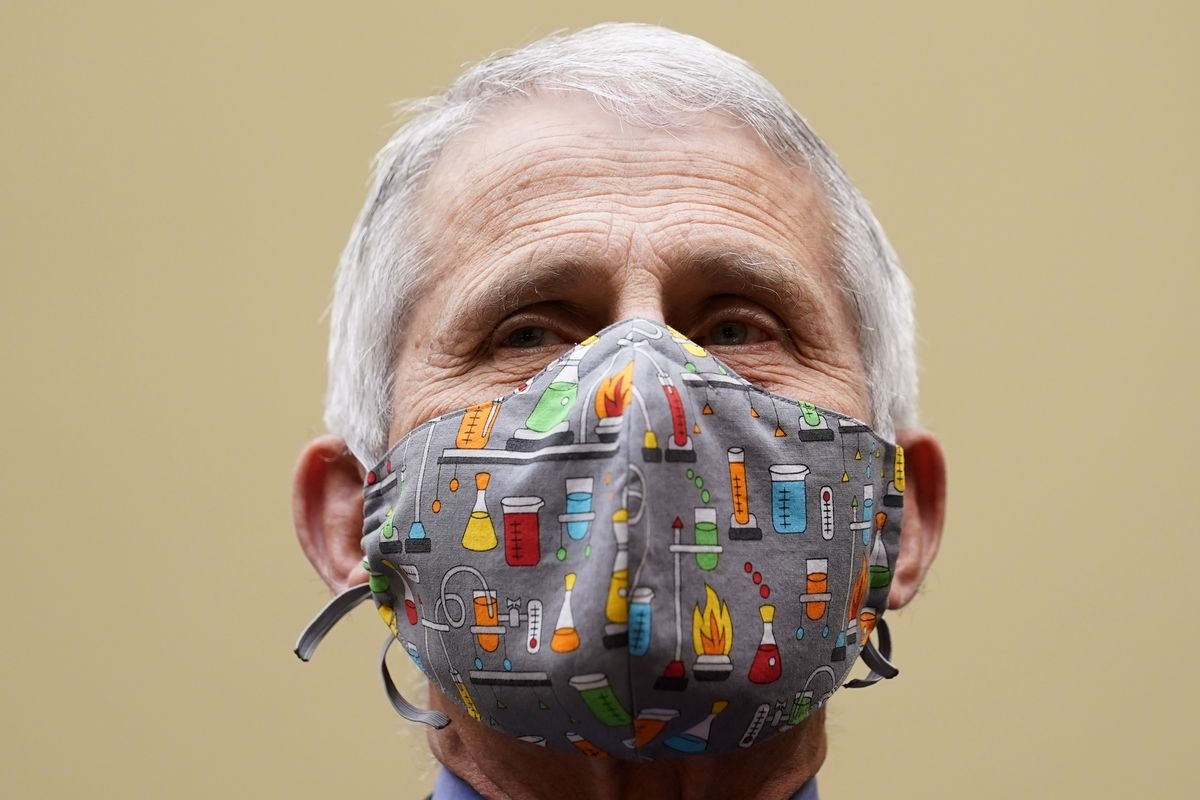 Dr. Anthony Fauci testifies before a House Select Subcommittee on the coronavirus crisis in Washington.