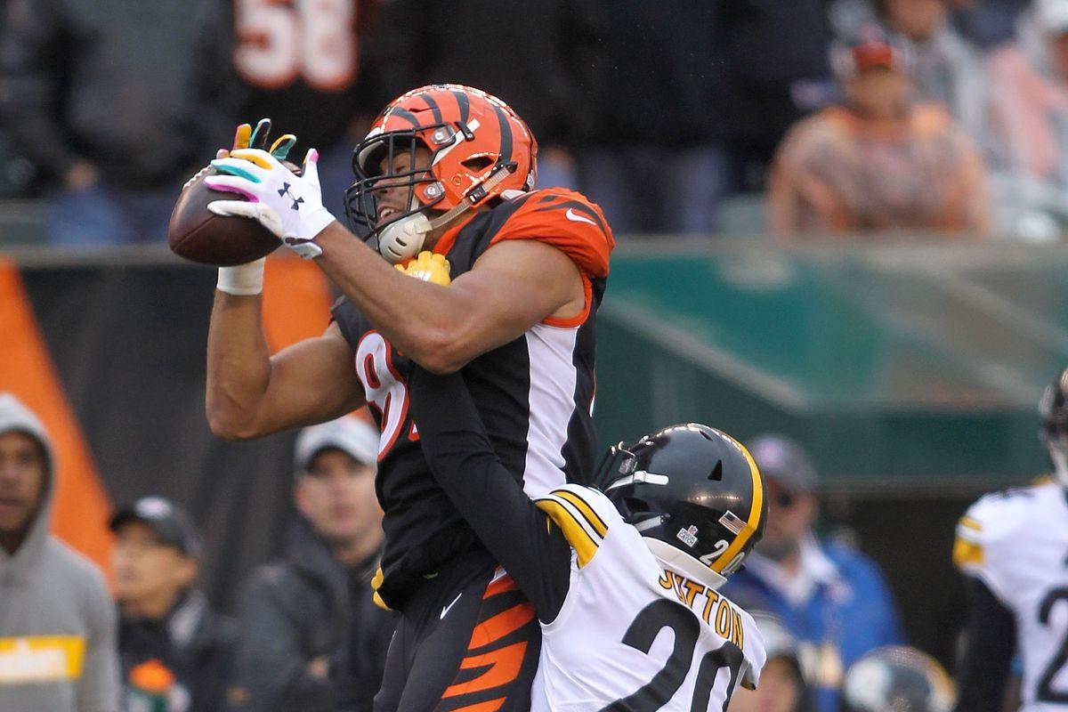46d3bf3e09 NFL Week 17 Primer  Cincinnati Bengals (6-9) at Pittsburgh Steelers (8-6-1)