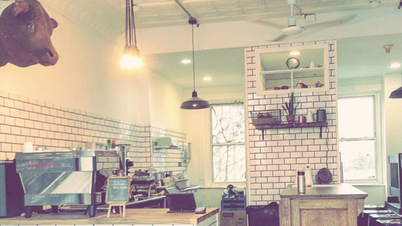 Curio Coffee Softly Opens in East Cambridge on Wednesday ...