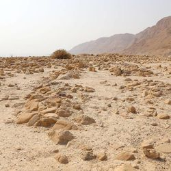 The rocks cover ancient graves at Qumran that are oriented in an unusual north-south axis. photographed Nov. 5, 2013. Dead Sea Scrolls: Life and Faith in Ancient Times exhibit will be on display November through April 2014 at The Leonardo in Salt Lake City.