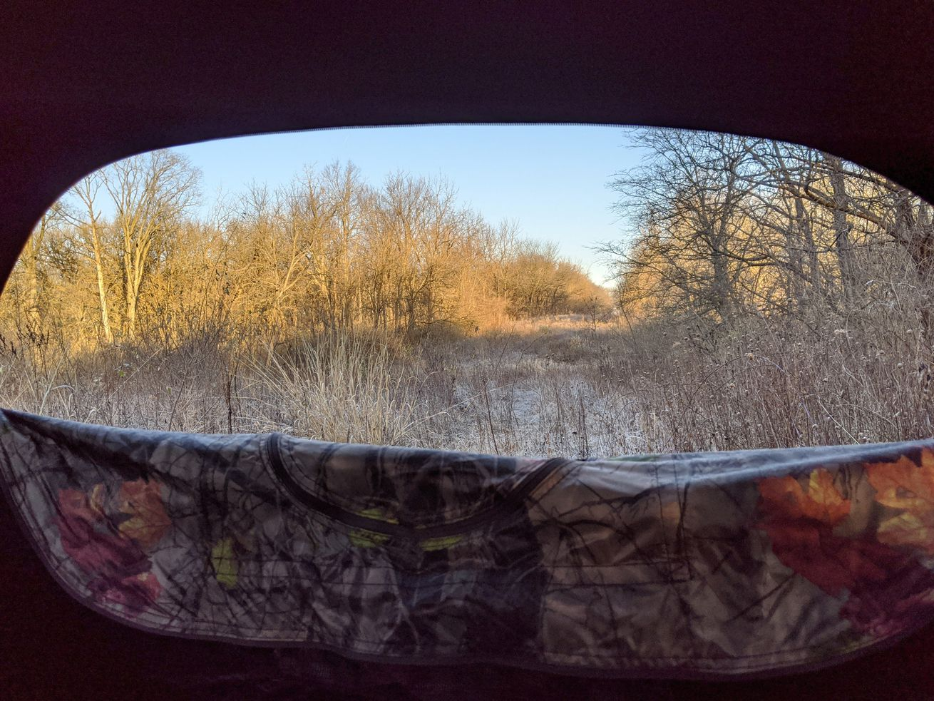 File photo scene from a deer blind during Illinois' 2020-21 deer season. Credit: Dale Bowman