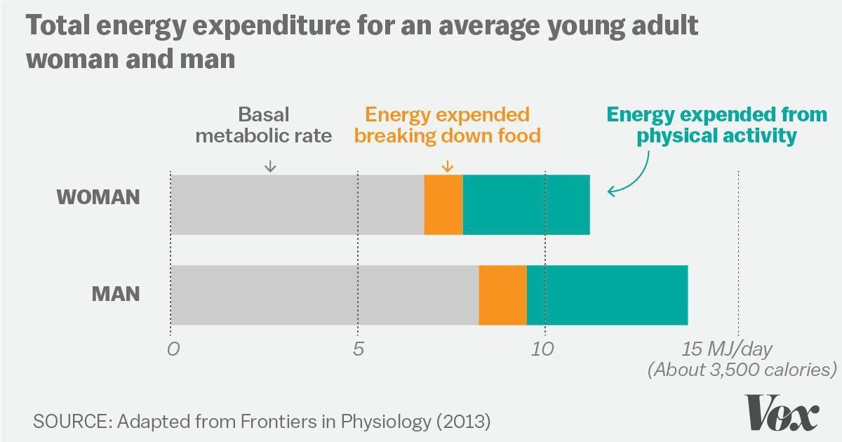 does aging dieting decrease bmr