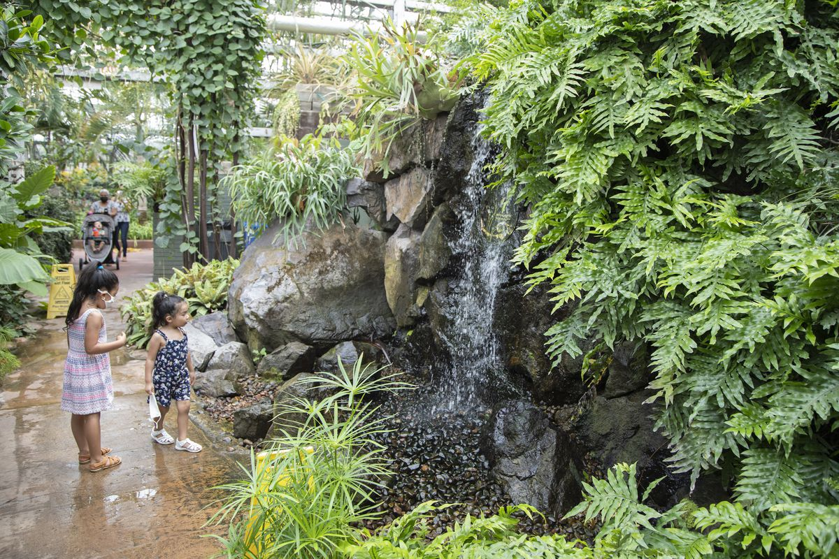 Two children watch a waterfall at Garfield Park Conservatory.