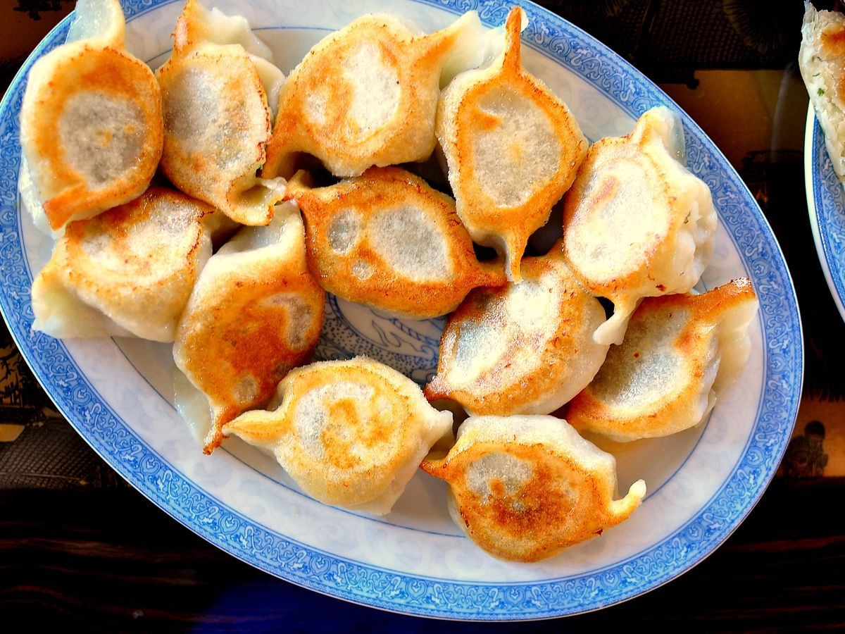 Pan fried dumplings from Tasty Noodle House on a blue and white plate.