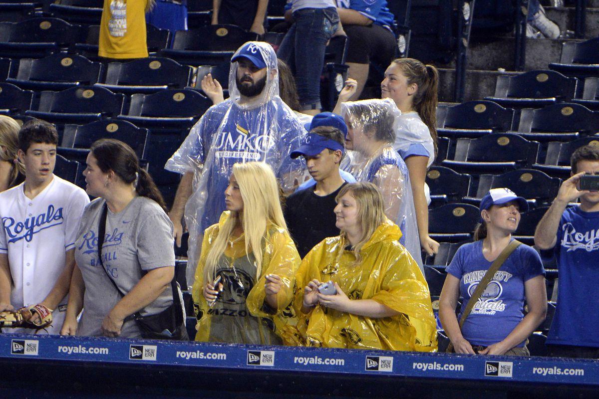 Royals fans.