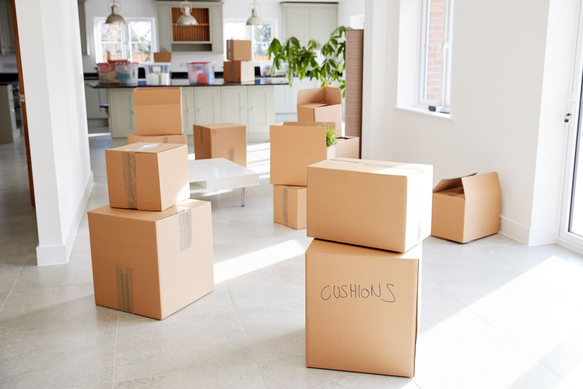 Brown cardboard moving boxes in a bright kitchen area with white walls and green plants.