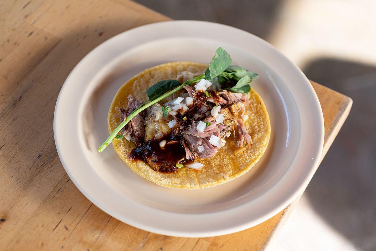 一种墨西哥玉米卷,上面有肉、酱汁和绿色的香草。
