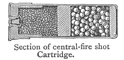 A diagram showing the location of gun powder and shot in a shotgun shell.