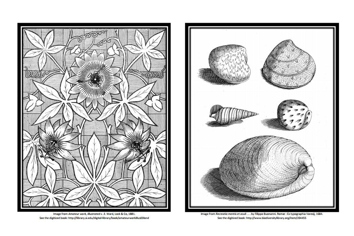 Get Free Coloring Books From Major Libraries And Museums Curbed
