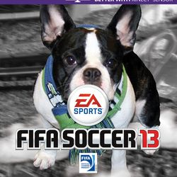 FIFA13 cover: Pain Machine