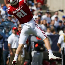 Wisconsin Badgers tight end Troy Fumagalli (81) makes a reception for a first down during the game against the Brigham Young Cougars at LaVell Edwards Stadium in Provo on Saturday, Sept. 16, 2017.
