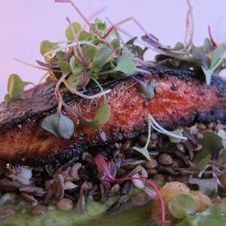 "Harissa Salmon at Dimes <a href=""https://www.flickr.com/photos/scottlynchnyc/14661948290/in/pool-eater/"">Scoboco"