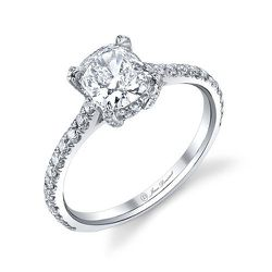 Cushion cut diamond center stone set with approximately 80 brilliant cut diamonds