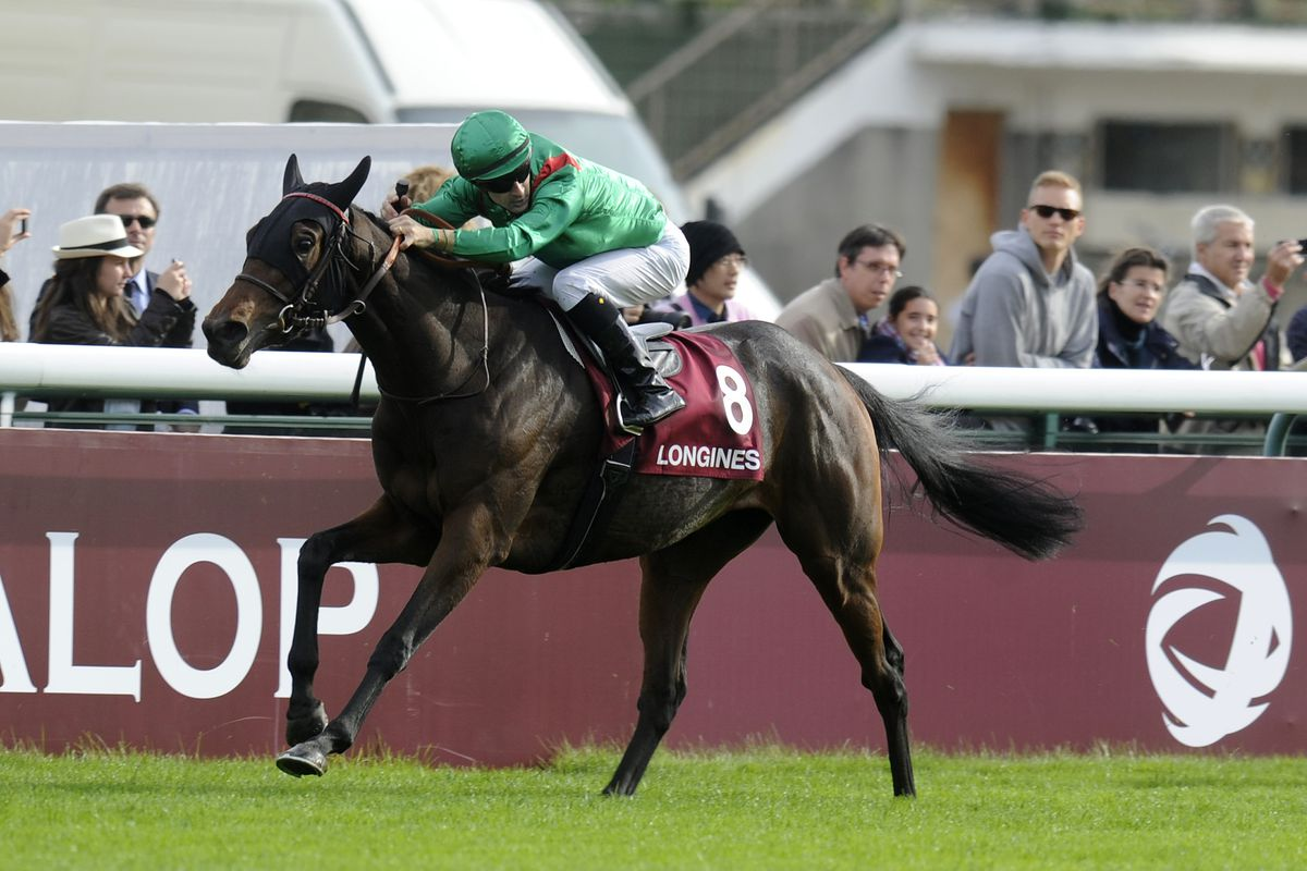 Breeders Cup 2012 Filly Amp Mare Turf Preview Sbnation Com