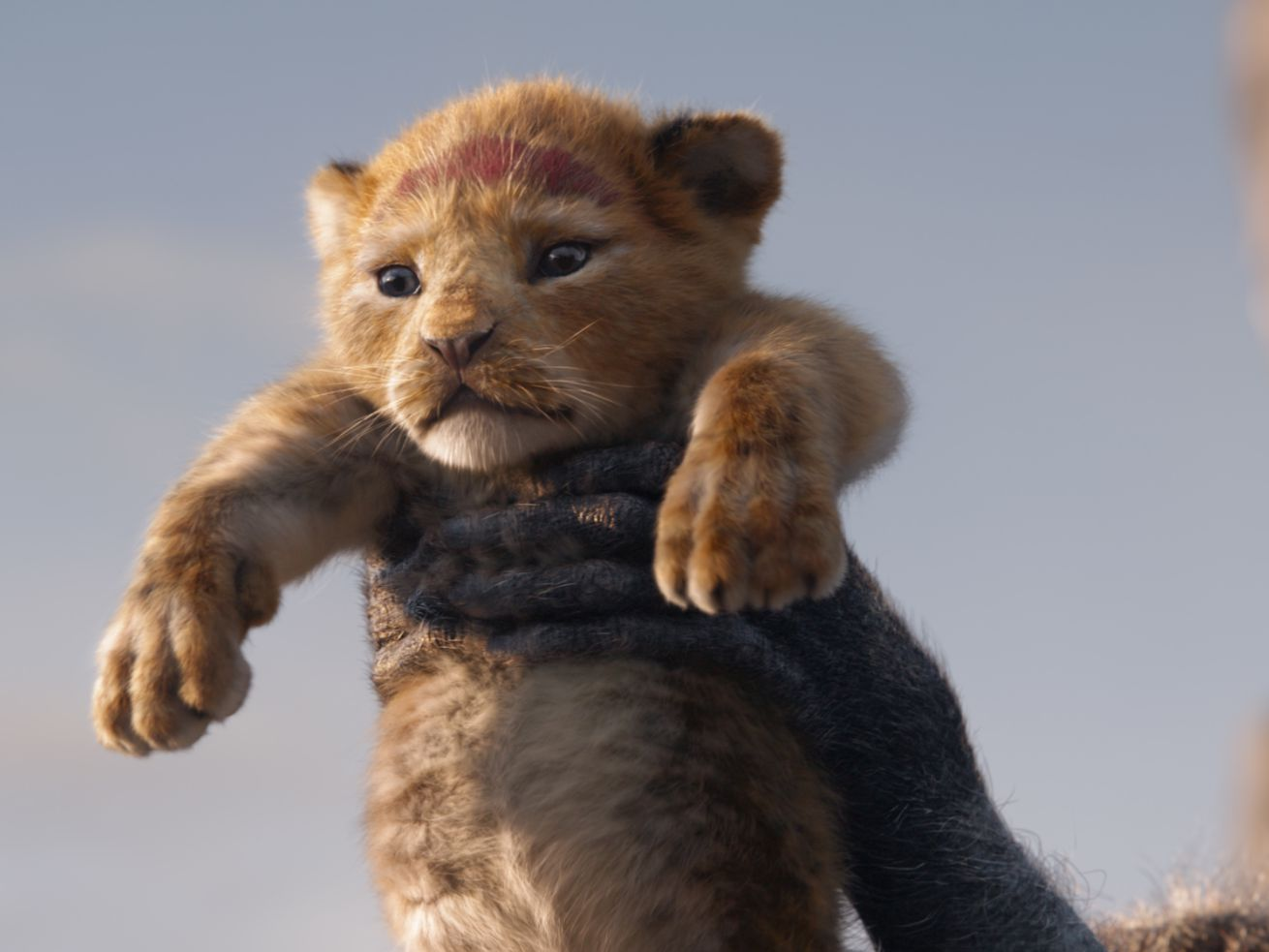 Disney's Lion King remake is just like the original, but without the magic - The Reports