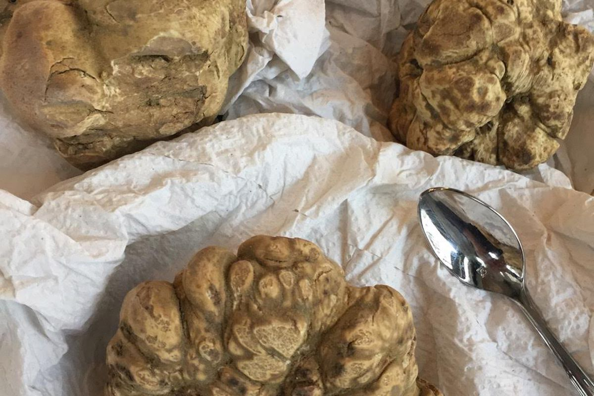 Truffles at Panzano
