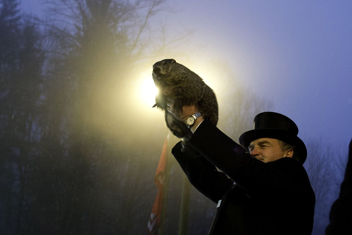 The rodent we all trust to tell us if there will be six more weeks of winter.