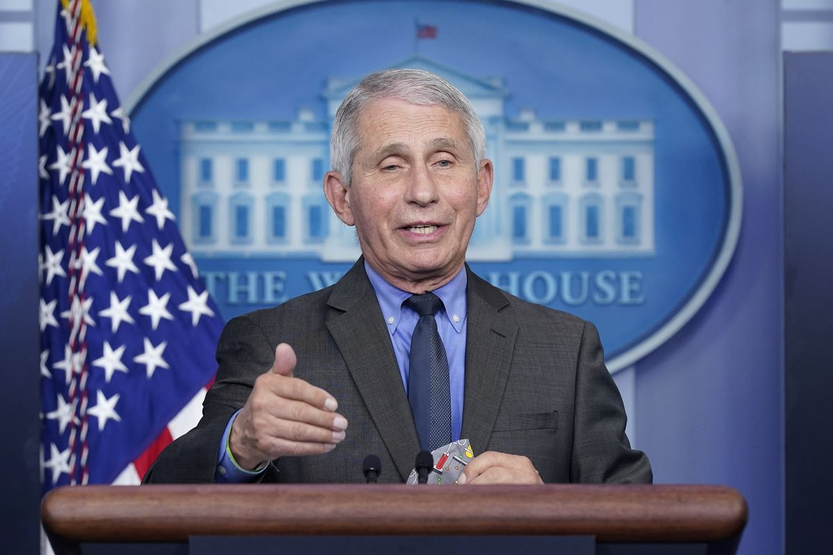 Dr. Anthony Fauci, director of the National Institute of Allergy and Infectious Diseases, speaks in Washington.
