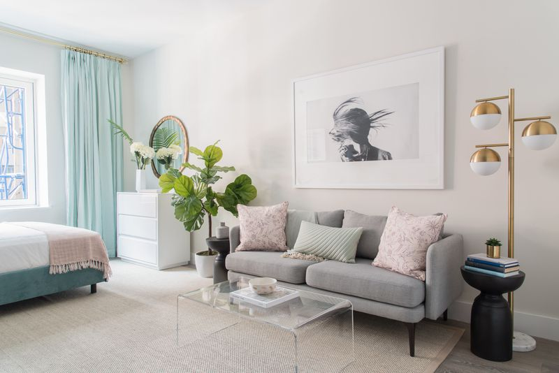 A living area with a grey couch, a planter, a glass coffee table, a framed picture on the wall, and a beige rug.