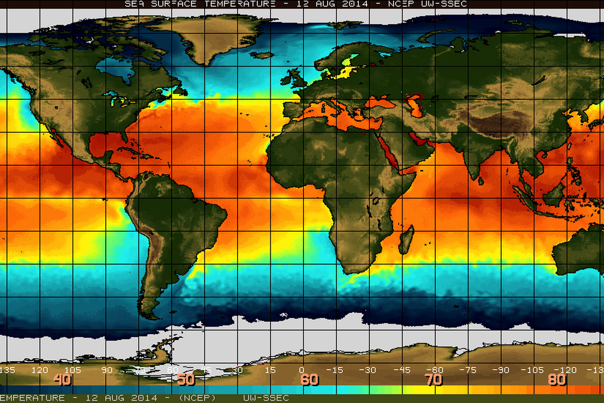 Sea surface temperatures as of August 12, 2014. El Niño is characterized by unusually warm temperatures in the equatorial Pacific.