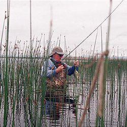 A lone angler casts into the reeds at Pelican Lake in hopes of hooking a bluegill or largemouth bass in June.