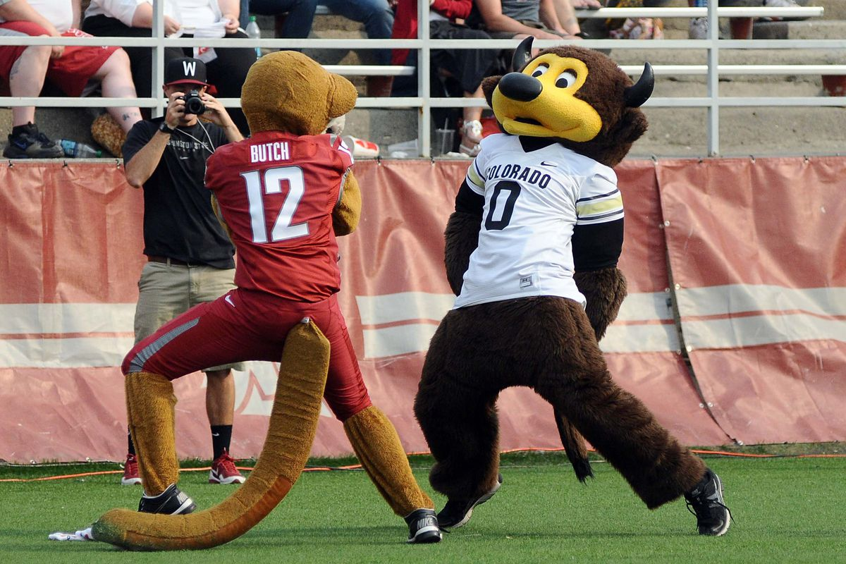 Who would've thought that the mascot stare down <em>wouldn't</em> be the most interesting aspect of Colorado at Washington State?