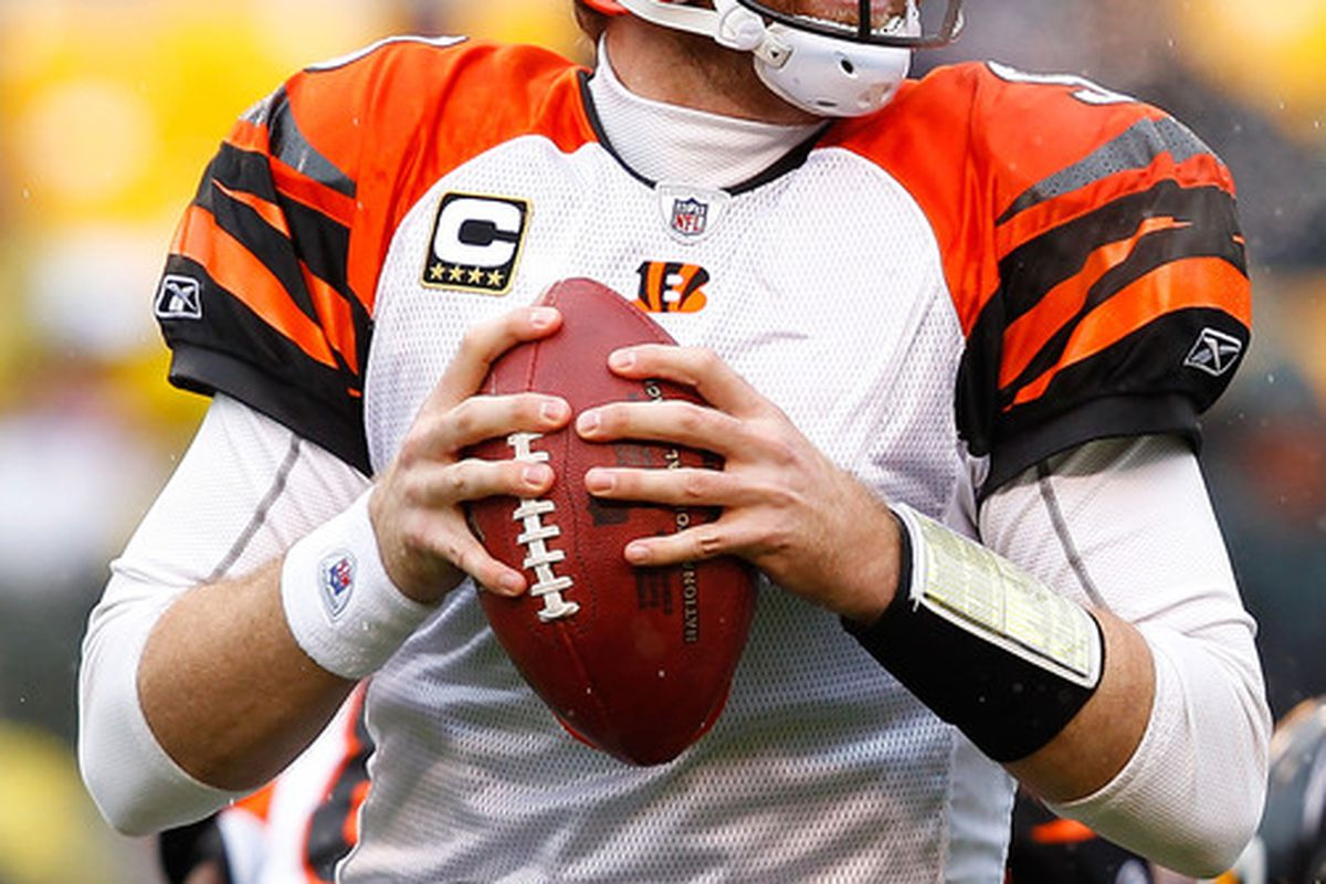 PITTSBURGH - DECEMBER 12:  Carson Palmer #9 of the Cincinnati Bengals drops back to pass against the Pittsburgh Steelers during the game on December 12 2010 at Heinz Field in Pittsburgh Pennsylvania.  (Photo by Jared Wickerham/Getty Images)