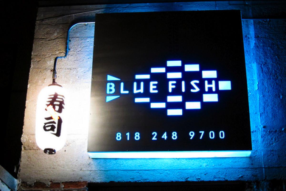 Blue Fish, Montrose.